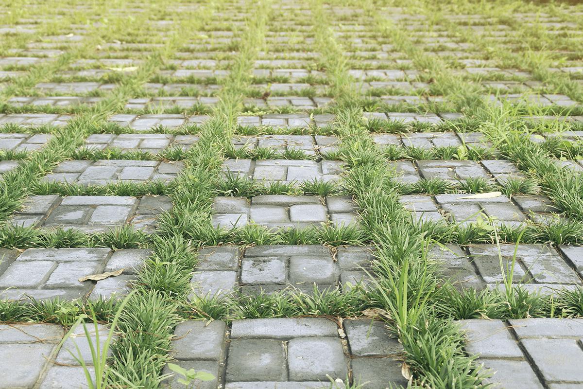 Armstone - Replacing Damaged Travertine Tiles